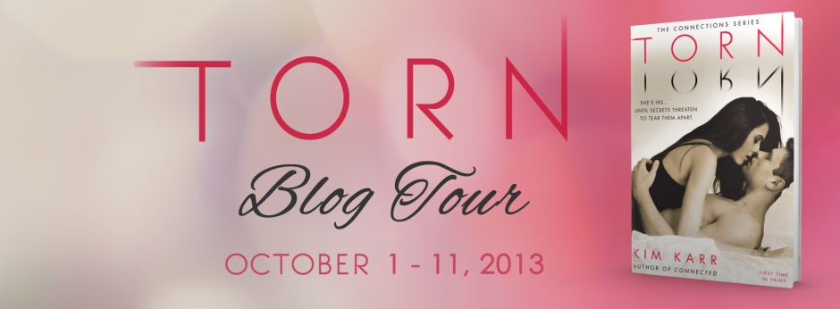 TORN Blog Tour Banner